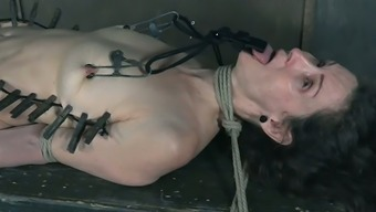 Tons Pegs Are Used To Make Submissive Weak Hoe Paintoy Emma Murmur
