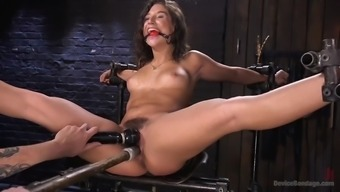 Fucked Over Strange Guy Immobilizes Succulent Abella Risk And Torments Her Hirsuite Clit
