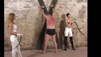 Adult Man Beating With Singletail Snakewhip