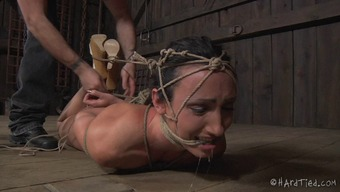 Exclaim As Bondage Infant Pussy Is Teased Utilizing Things In Bdsm