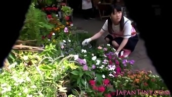 Little Japanese People Florist Pussyfucked In Web Store