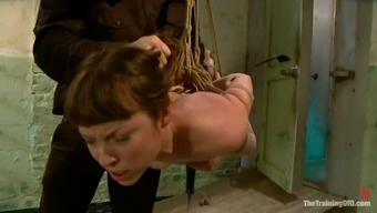 Inadequate Seda Gets Toyed And Spanked Severely In Bdsm Vid