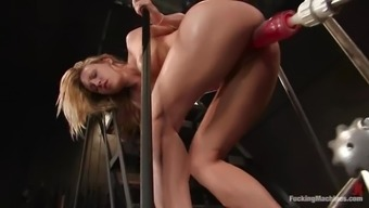 Virile Pale May Spread Her Both Legs For Getting A Fucking Machinery
